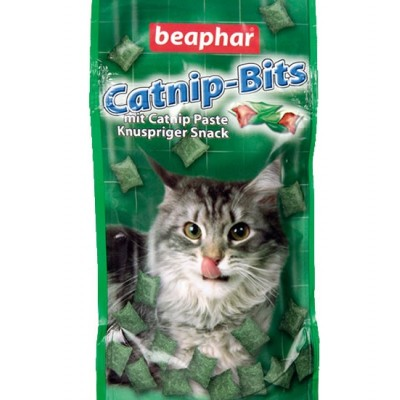 Catnip Bits