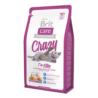 BRIT CARE CAT Kitten