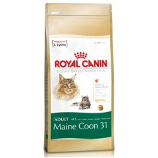 Royal Canin Maine Coon 31- 10 kg
