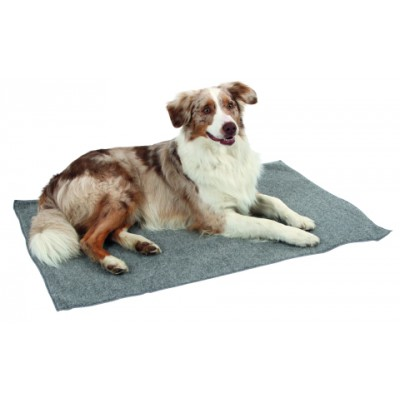 Anti Slip Carpet 107 x 71 cm