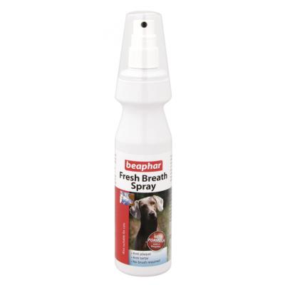 Fresh Breath Spray