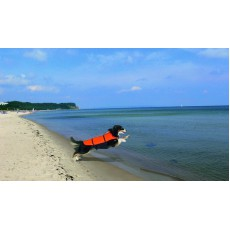 Karlie Doggy Aqua-Top M (l-44cm)