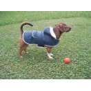 Dog Coat Teddy M
